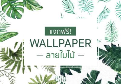 แจกฟรี!!! Wallpaper ลายใบไม้ไว้ใช้ให้อินกับปี 2017