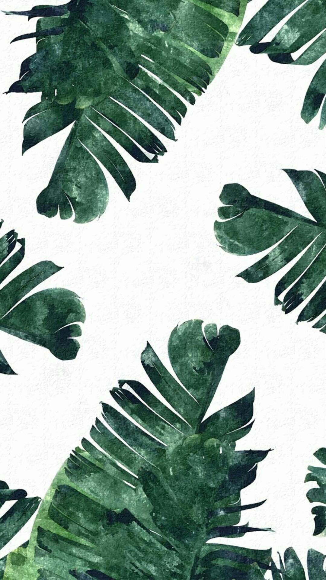 Large Image For Asclepias Incarnata Swamp Milkweed: แจกฟรี!!! Wallpaper ลายใบไม้ไว้ใช้ให้อินกับปี 2017